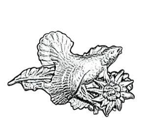 Odznak ARTURE tetřev velký s protěží 2615