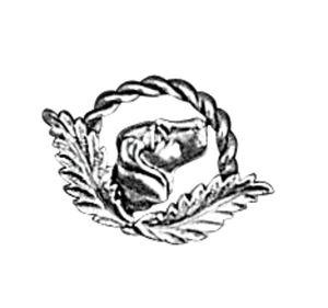 Odznak ARTURE pes 2648