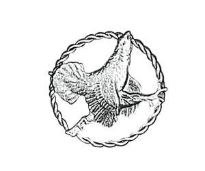 Odznak ARTURE tetřev v kroužku 2618