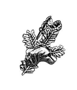 Odznak ARTURE touleček s hlavou psa 2642
