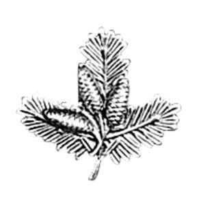 Odznak ARTURE úlomek malý širší s šiškami 2646
