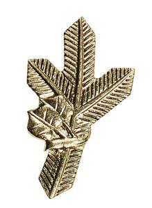 Odznak na klopy zlatá větvička pravá ARTURE 267402P