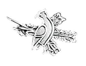 Odznak ARTURE špendlík bažant s úlomkem 2630