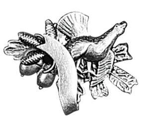 Odznak ARTURE tetřev s šiškami a stuhou 2623
