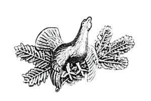 Odznak ARTURE tetřev s větvičkami 2622